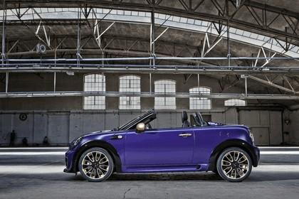 2012 Mini Roadster by Franca Sozzani for Life Ball 4