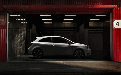 2012 Renault Ibiza FR Worthersee Edition 3