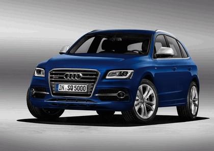 2013 Audi SQ5 TDI 1