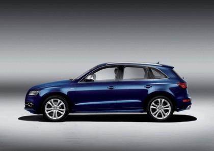 2013 Audi SQ5 TDI 5