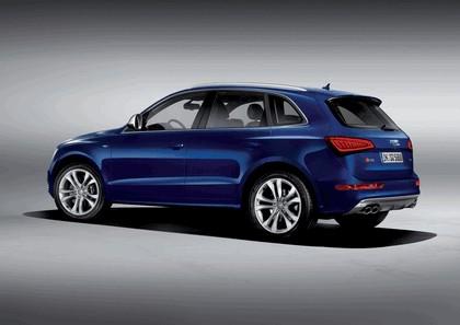 2013 Audi SQ5 TDI 6