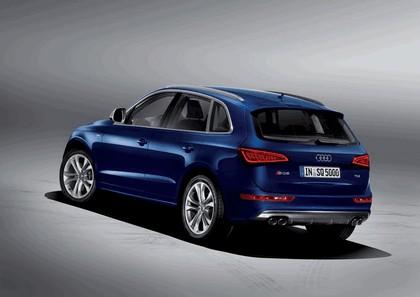 2013 Audi SQ5 TDI 7
