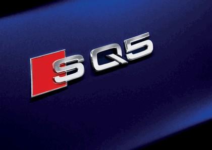 2013 Audi SQ5 TDI 13