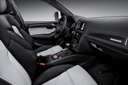2013 Audi SQ5 TDI 17