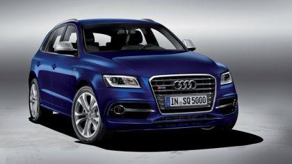 2013 Audi SQ5 TDI 2