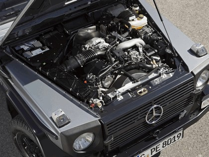 2010 Mercedes-Benz G300 ( W461 ) CDI Professional 10