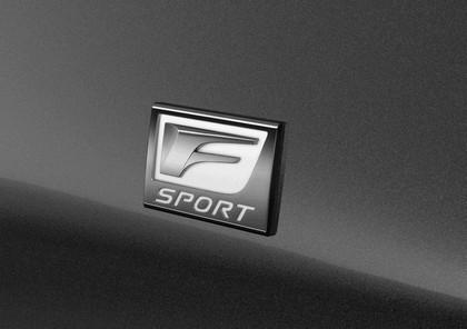 2013 Lexus LS 460 F-Sport 10