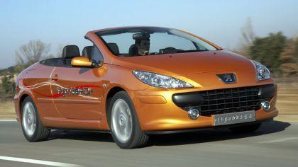 2006 Peugeot 307 CC HybrideHDi concept 9