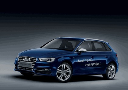 2013 Audi A3 Sportback TCNG 1