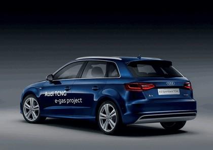 2013 Audi A3 Sportback TCNG 3