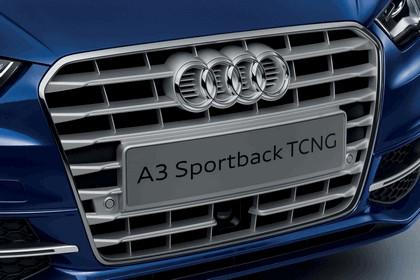 2013 Audi A3 Sportback TCNG 5