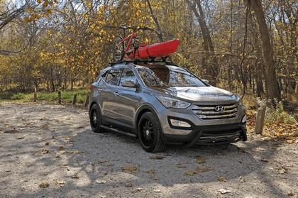 2012 Hyundai Santa Fe by Dee Zee 1