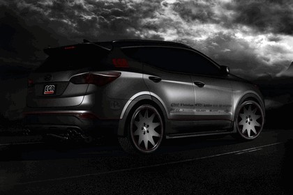 2012 Hyundai Santa Fe Sport by EGR 4