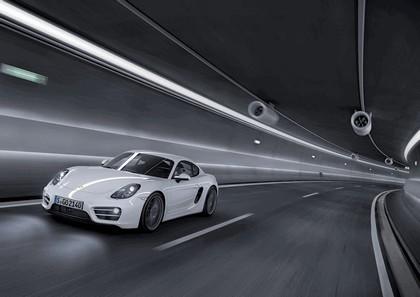 2013 Porsche Cayman 1