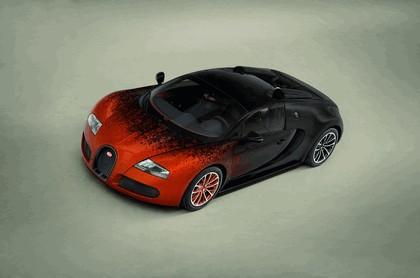 2012 Bugatti Veyron 16.4 Grand Sport by Bernar Venet 7