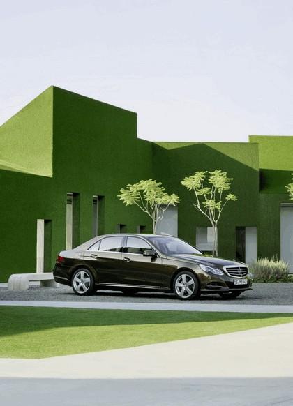 2013 Mercedes-Benz E300 ( W212 ) BlueTec Hybrid 12