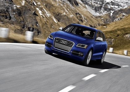 2013 Audi SQ5 TFSI - USA version 6
