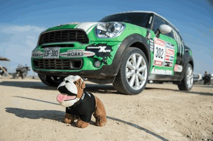 2013 Mini Countryman - Dakar rally 31