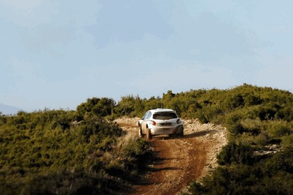 2013 Peugeot 208 Type R5 - test car 4