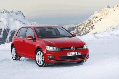 2013 Volkswagen Golf ( VII ) 4Motion 8