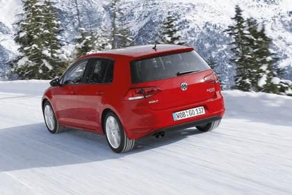 2013 Volkswagen Golf ( VII ) 4Motion 9