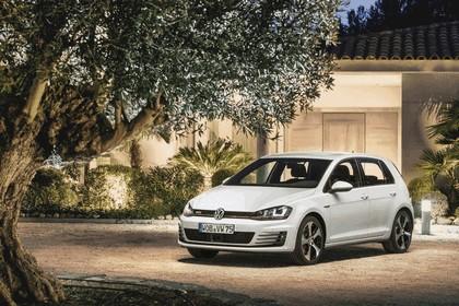 2013 Volkswagen Golf ( VII ) GTI 19
