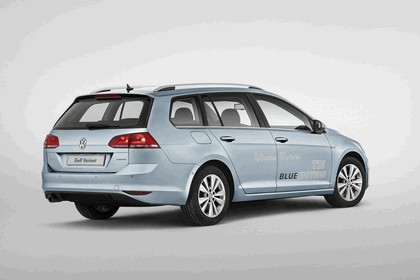 2013 Volkswagen Golf ( VII ) Variant TSI BlueMotion 12