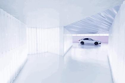 2013 Mercedes-Benz CLA250 Edition 1 10