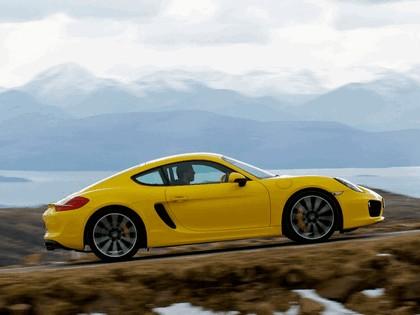 2013 Porsche Cayman ( 981C ) S - UK version 6