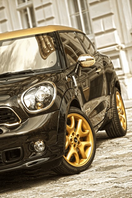2013 Mini Paceman Cooper S by Roberto Cavalli for Life Ball 7