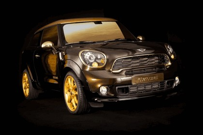 2013 Mini Paceman Cooper S by Roberto Cavalli for Life Ball 8