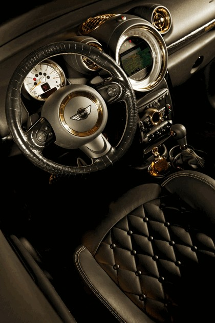 2013 Mini Paceman Cooper S by Roberto Cavalli for Life Ball 12