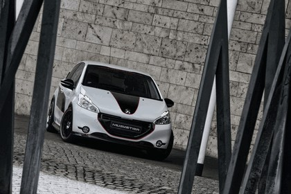 2013 Peugeot 208 engarde by Musketier 15