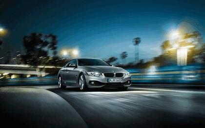2013 BMW 435i ( F32 ) 15