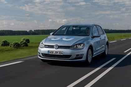 2013 Volkswagen Golf ( VII ) TDI BlueMotion 5