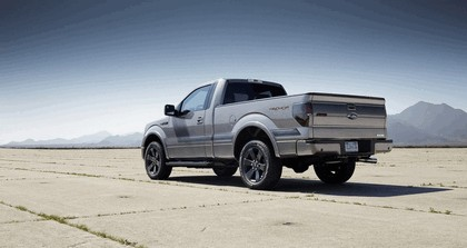 2013 Ford F-150 Tremor 14