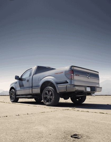 2013 Ford F-150 Tremor 15