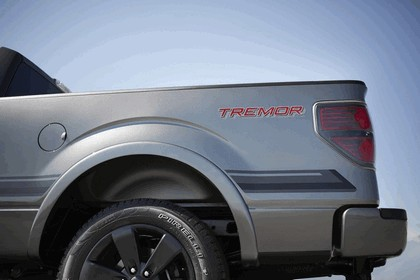 2013 Ford F-150 Tremor 23