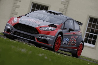 2013 Ford Fiesta R5 - European Rally Championship 3