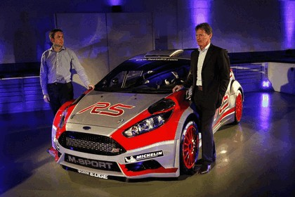 2013 Ford Fiesta R5 - European Rally Championship 4
