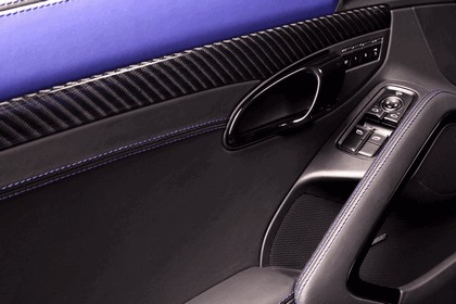 2013 Porsche 911 ( 991 ) Carrera Stinger by TopCar 20