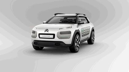 2013 Citroën Cactus concept 1