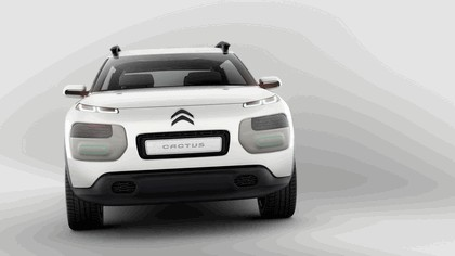 2013 Citroën Cactus concept 3
