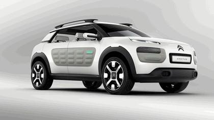 2013 Citroën Cactus concept 6