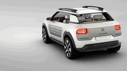 2013 Citroen Cactus concept 9