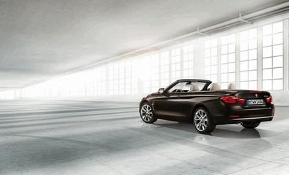 2013 BMW 420d ( F33 ) convertible Modern Line 3