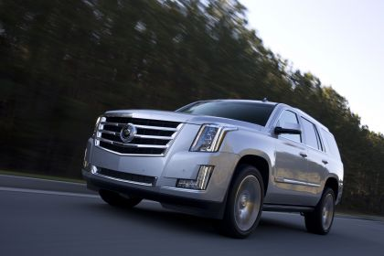 2015 Cadillac Escalade 30