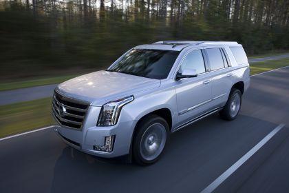2015 Cadillac Escalade 31