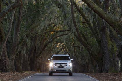 2015 Cadillac Escalade 43