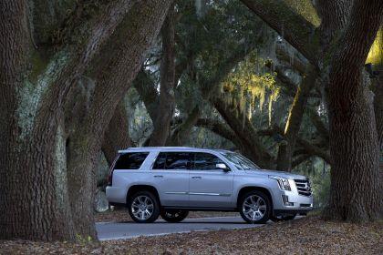 2015 Cadillac Escalade 48